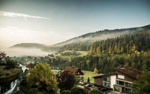2017_Drivingevent_AMG_TraubeTonbach2 (7)