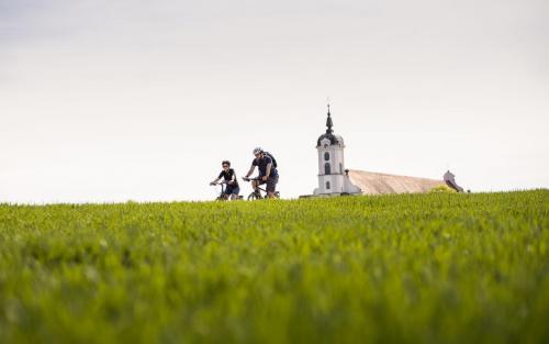 Fahrradfahren Landkreis Neu-Ulm Elchingen Paar Tourismus Freizeit Urlaub Klosterkirche