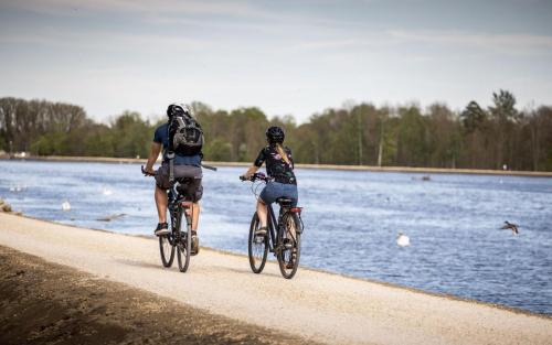 Fahrradfahren Landkreis Neu-Ulm Paar Tourismus Freizeit Urlaub Donau Ufer Fluss Schwäne