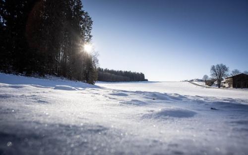 Matzenhofen, Neu-Ulm, Landkreis, Drohne, Winter, Panorama, Wald, Luftaufnahme